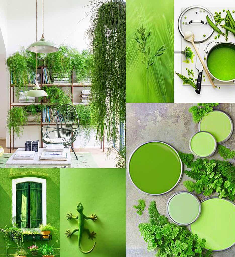 Az év színe 2017 : lomb zöld: