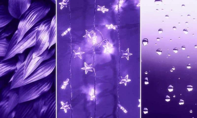 2018 év színe az ultra violet_élénk lila (73)