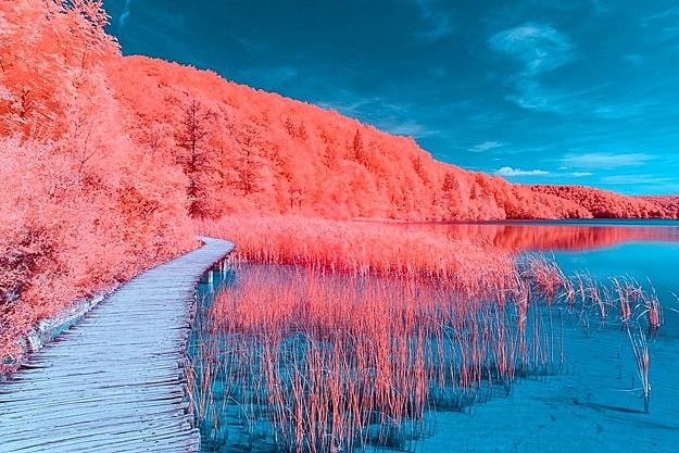 2019-es-év-színe-Pantone-16-1546-Living-Coral-függönyvarrás-eger-Agria-Textil-3.jpg