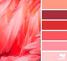 A 2019 év színe a Pantone 16-1546 Living Coral - függönyvarrás eger, Agria Textil (1)