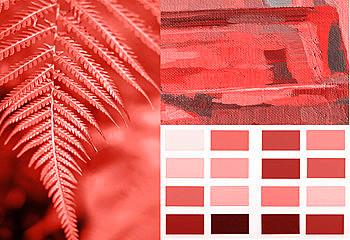 A 2019 év színe a Pantone 16-1546 Living Coral - függönyvarrás eger, Agria Textil (12)